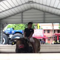 Kayden  Ridding The Bull